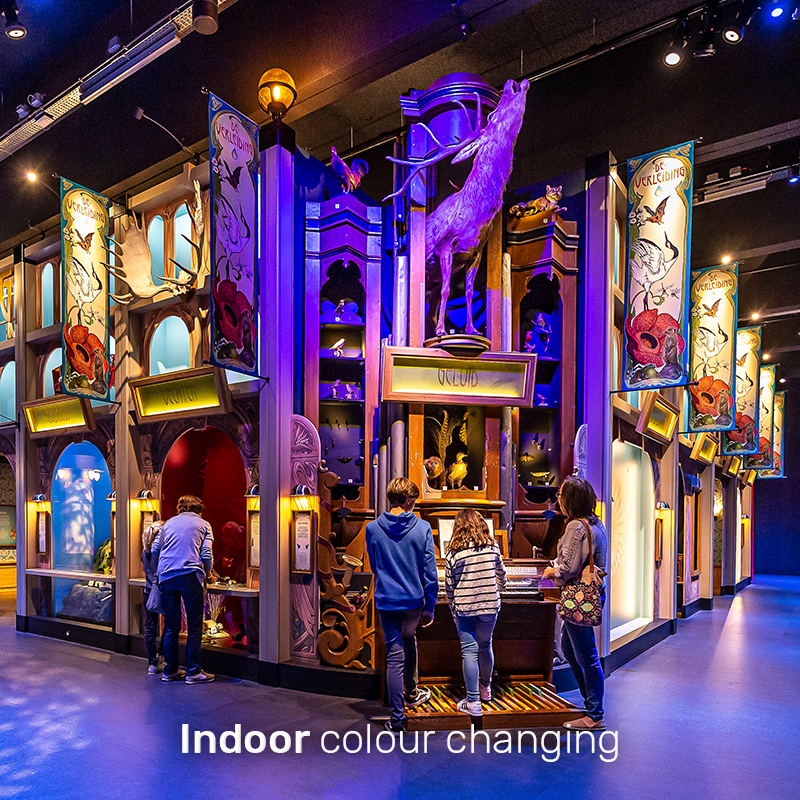 indoor-colour-changing
